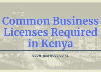 Common Business Licenses Required in Kenya